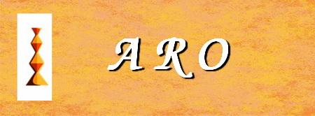 aro-asociatia-romanilor-din-frankfurt-si-imprejurimi