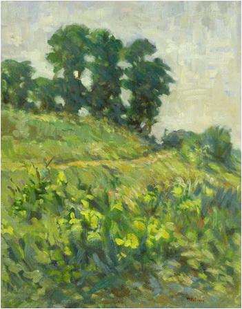 mihai potcoava Peisaj cu irisi galbeni