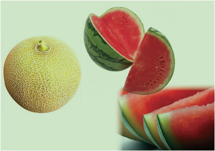 pepenele istoric