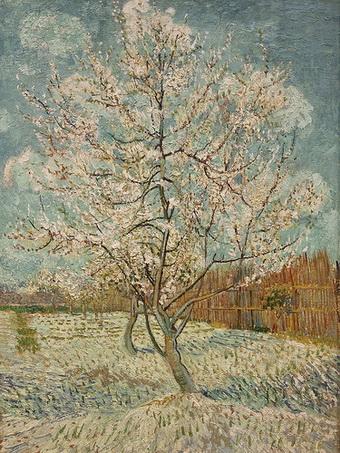 van gogh verger en fleurs aprilie 1888