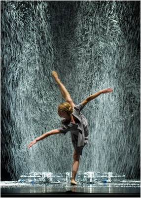 vortice dance company